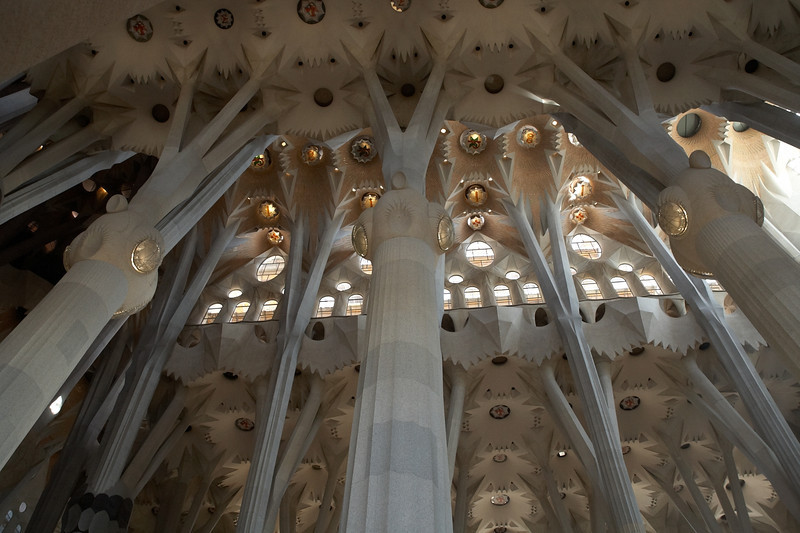 This view of the ceiling shows the forest like feeling one gets inside the cathedral.