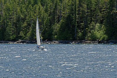 A sailboat sailing in the channel