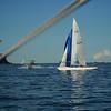 Sydney Sailing  26392