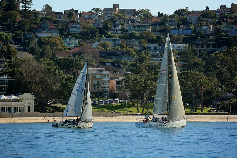 Sydney Sailing  26358