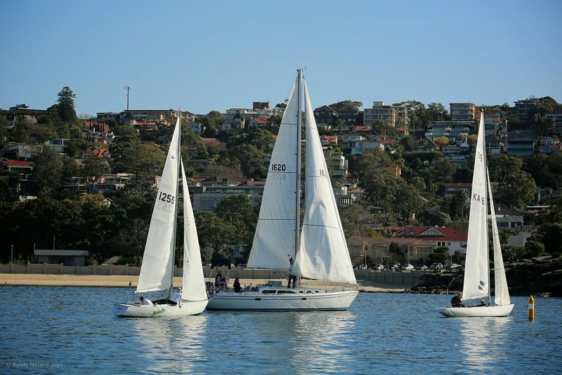 Sydney Sailing  26359