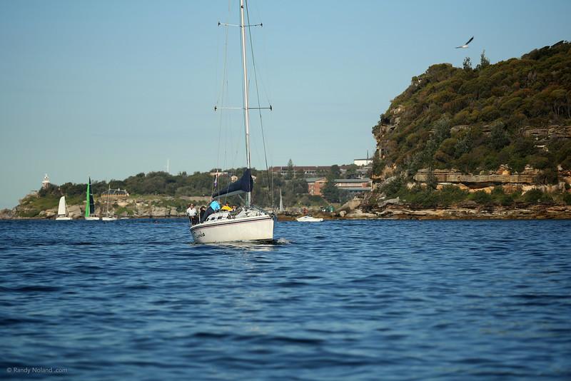 Sydney Sailing  26393