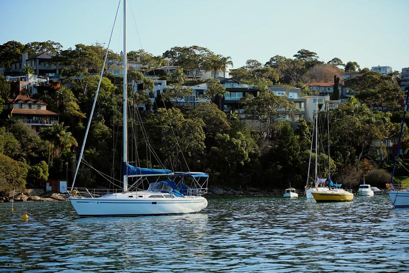 Sydney Sailing  26432