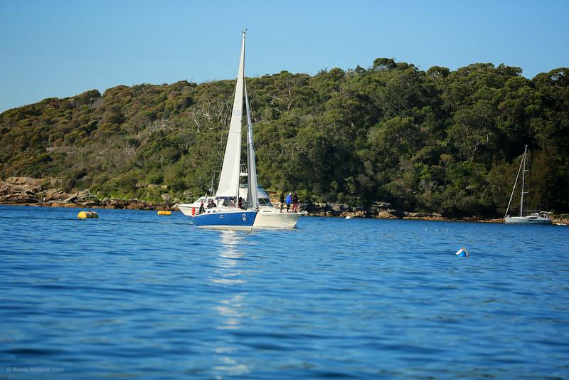 Sydney Sailing  26367