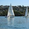 Sydney Sailing  26362