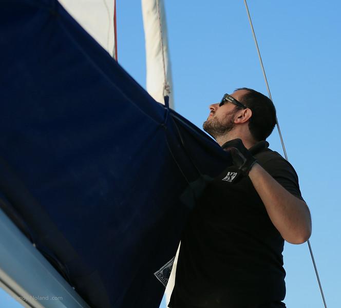 Sydney Sailing  26401