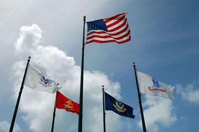 Flag Central Area