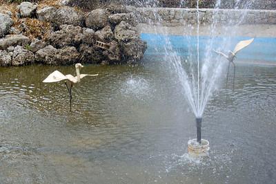 Japanese Hotel Fountain