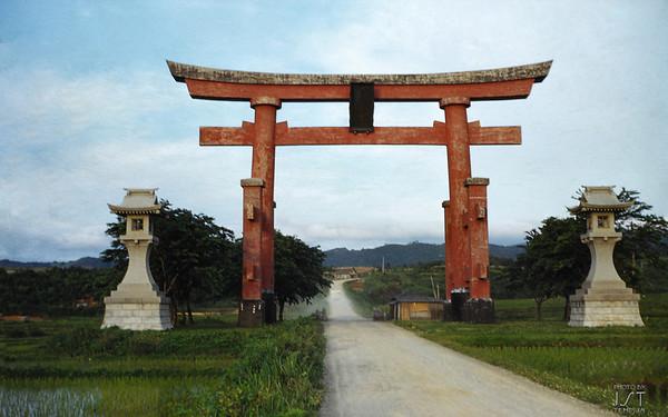 Torii Gate spanning  the road to Dewa Sanzan 1954
