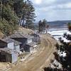 Fukura Coast April 1952