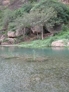 Across the creek at Ayn Razak