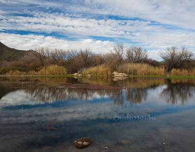 Sky_reflection_reeds_7225 - Copy