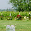 The vineyard is a popular venue for weddings.