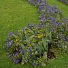 Mirabell Garden Salzburg