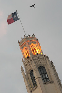 "The Emily Morgan is a classic hotel in San Antonio adjacent to the Alamo, whose namesake was thought to be the inspiration for the song, ""The Yellow Rose of Texas."""