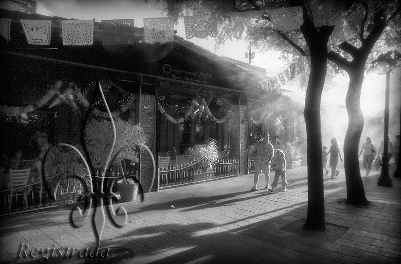 Mi Tierra Café y Panaderia/El Mercado