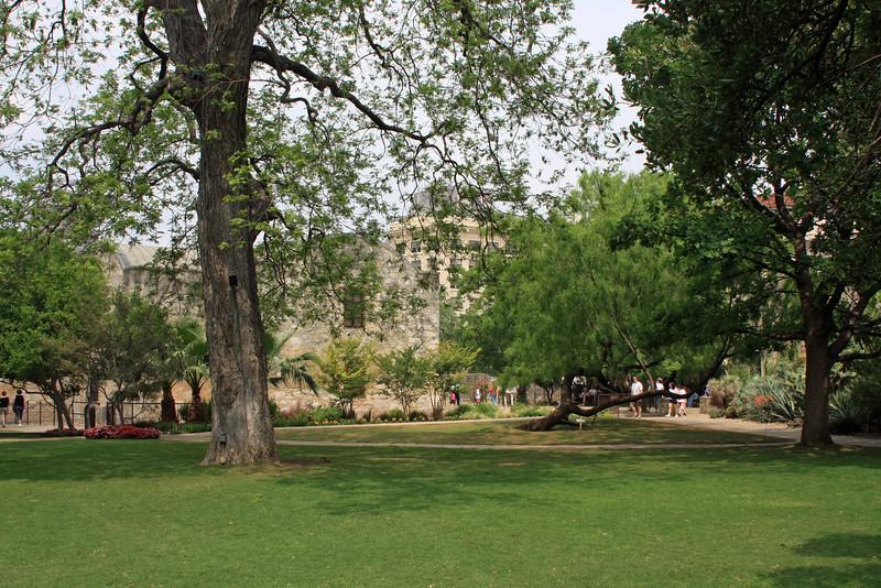 Grounds of the Alamo.
