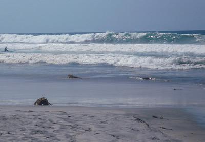 Waves San Diego 1008 (5)