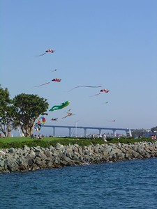 Kites in Embarcadero Park