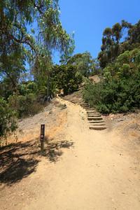 Path to Presidio Park