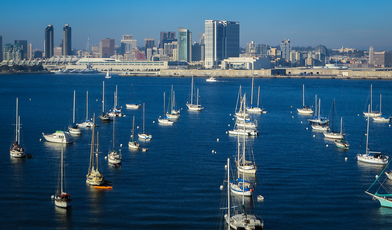 Sailboats aligned in harbor area