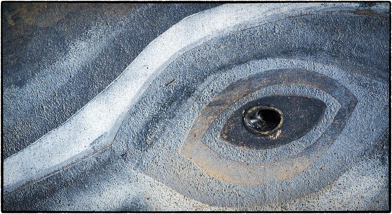 Whale's eye