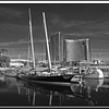 S.D.Marina by Seaport Village, Black and White