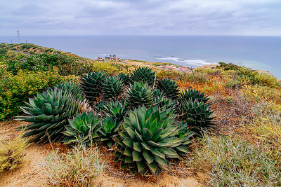 Cabrillo National Monument (San Diego, California)