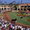 The paddock viewing area at the Del Mar Race Track, near San Diego, California.
