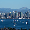 View of San Diego Bay and skyline with sailboats on a bright sunny day.