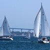 Sailboats in San Diego Bay with the Coronado Bridge in the background.