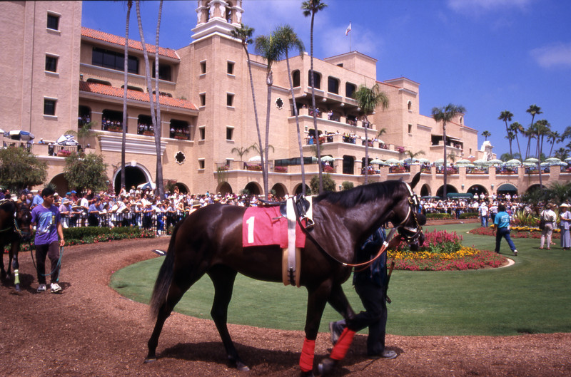 The paddock area of the Del Mar Rack Track near San Diego, California.
