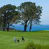 Torrey Pines South Golf Course on a beautiful afternoon!