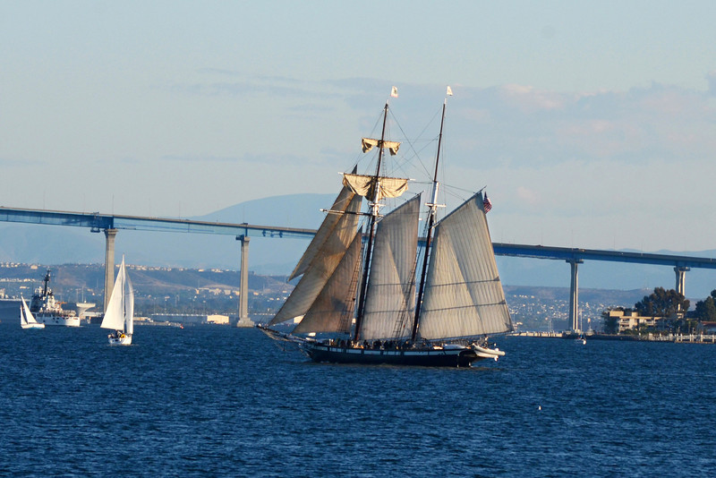 The tall ship Californian sails San Diego bay.