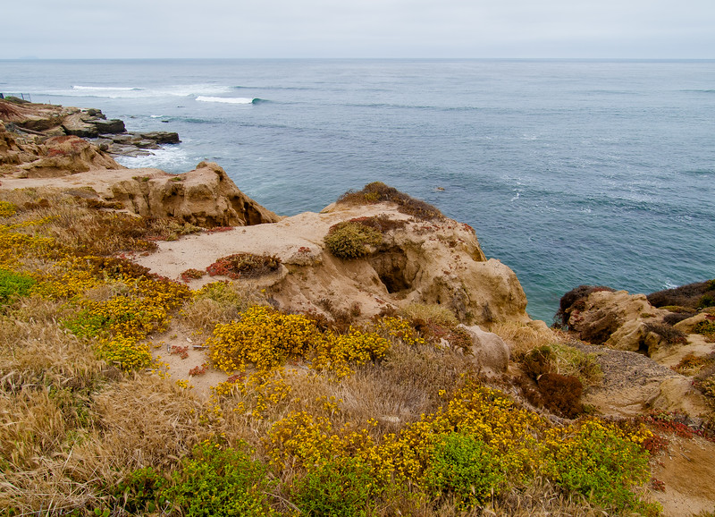 Surf, Point Loma