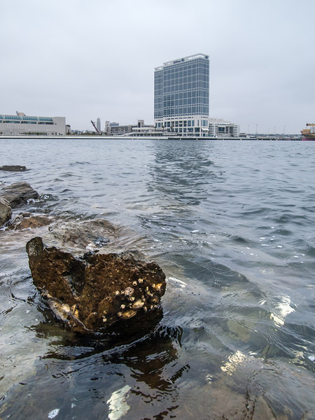 San Diego Hilton from Embarcadero Marina Park