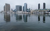 San Diego  viewed from Embarcadero Marina Park