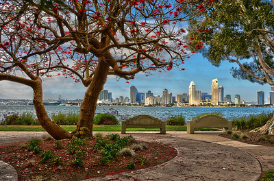 "An HDR of downtown San Diego taken from ""Bay View Park"" on Coronado."