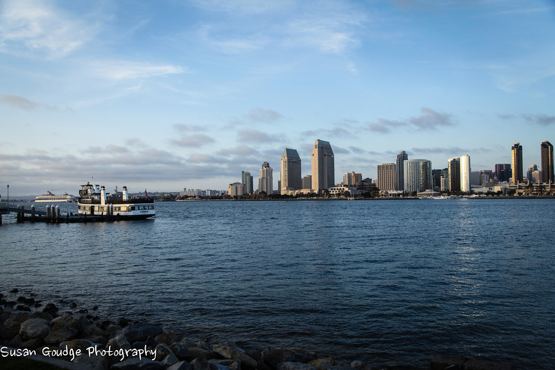 San Diego skyline from Coronado. The cruise ship leaving the harbor is the Celebrity Century.
