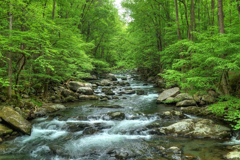 Big Creek in the Smoky Mountains, N Carolina