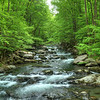 Big Creek in the Smoky Mountains, N Carolina