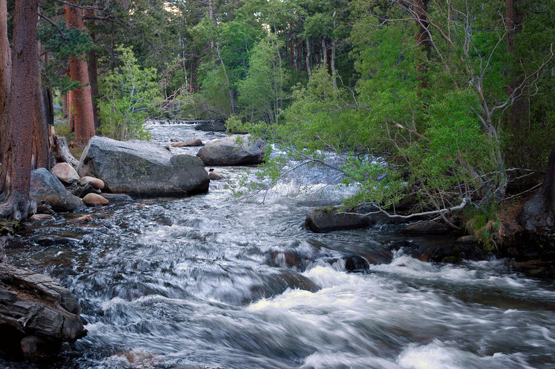 Rock Creek rushes down between the boulders in the Eastern Sierra of California.