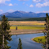 Beautiful Hayden Valley and the Yellowstone River in Yellowstone Park.