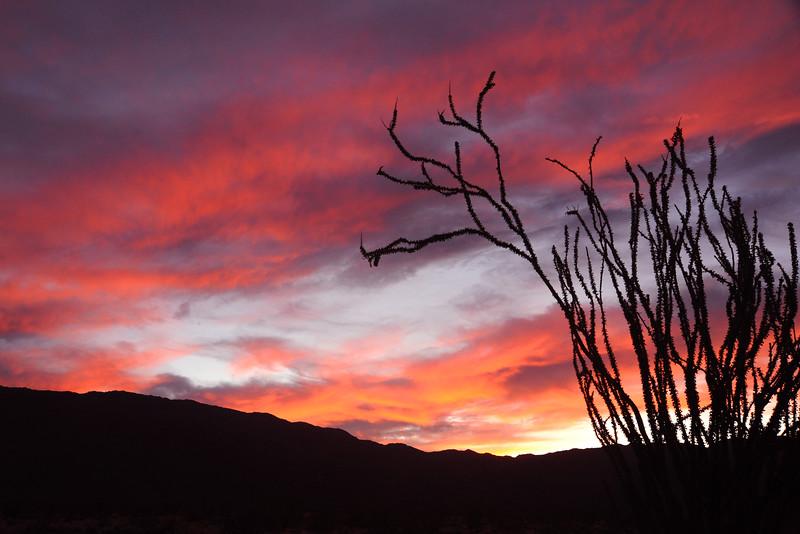 Anza Borrego sunset 1-30-16