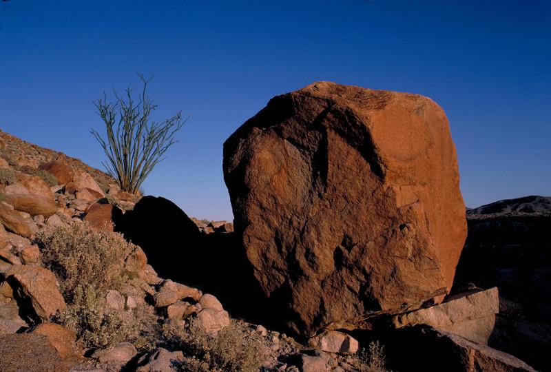 Desert scene in Anza Borrego State Park, California.