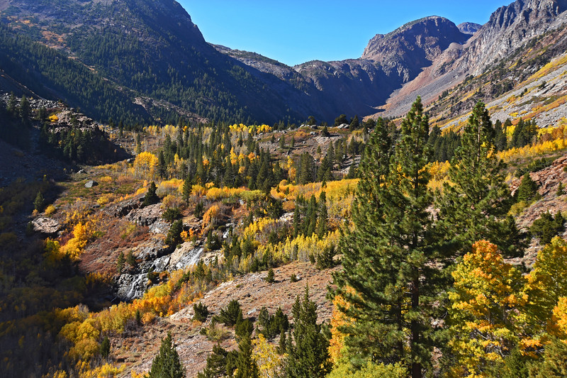 Upper Lundy Canyon, October 2020