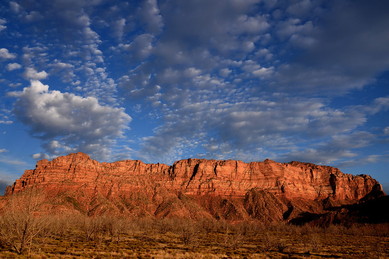 Late afternoon sun lights up the rocks near Zion National Park in Utah.
