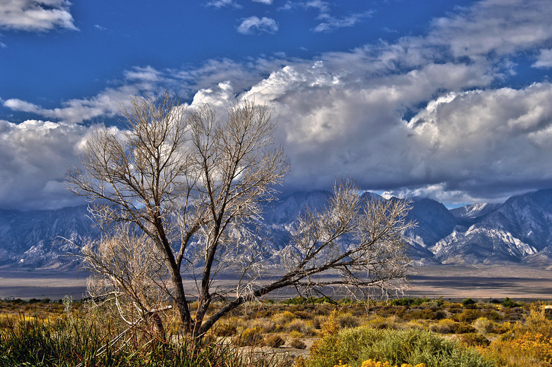 Owens Valley, California, looking west towards the Sierras.