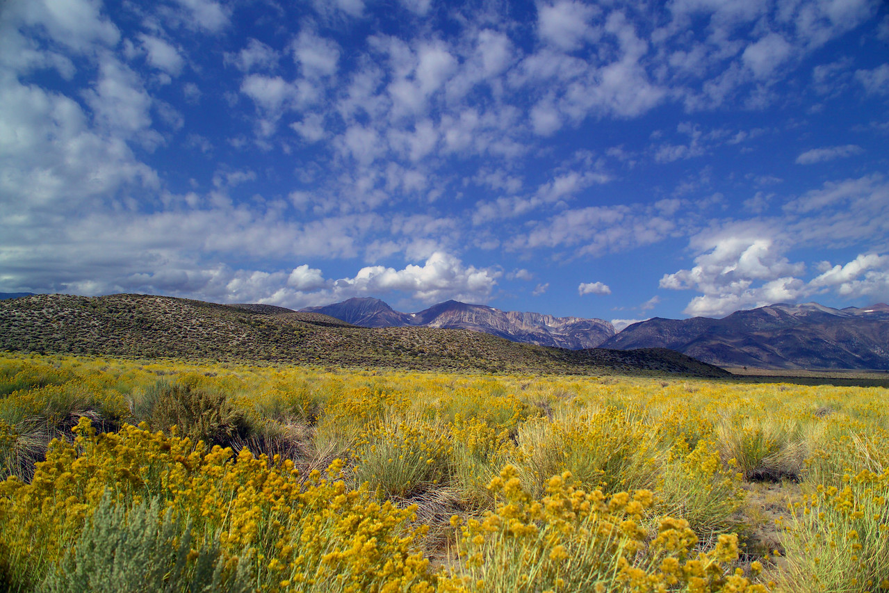 Eastern Sierra landscape near Mono Lake in California.