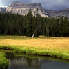 High mountain meadow in the High Uintas Wilderness in Utah.